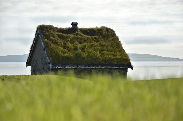 Kamenný dům