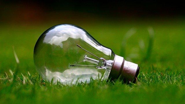 žárovka v trávě